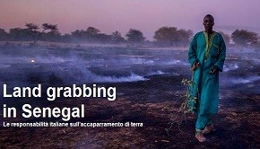 senegal-land-grabbing